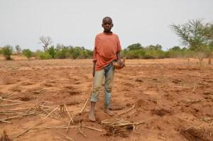 Ein junge steht auf dem Feld mit einem Behälter für Samen.