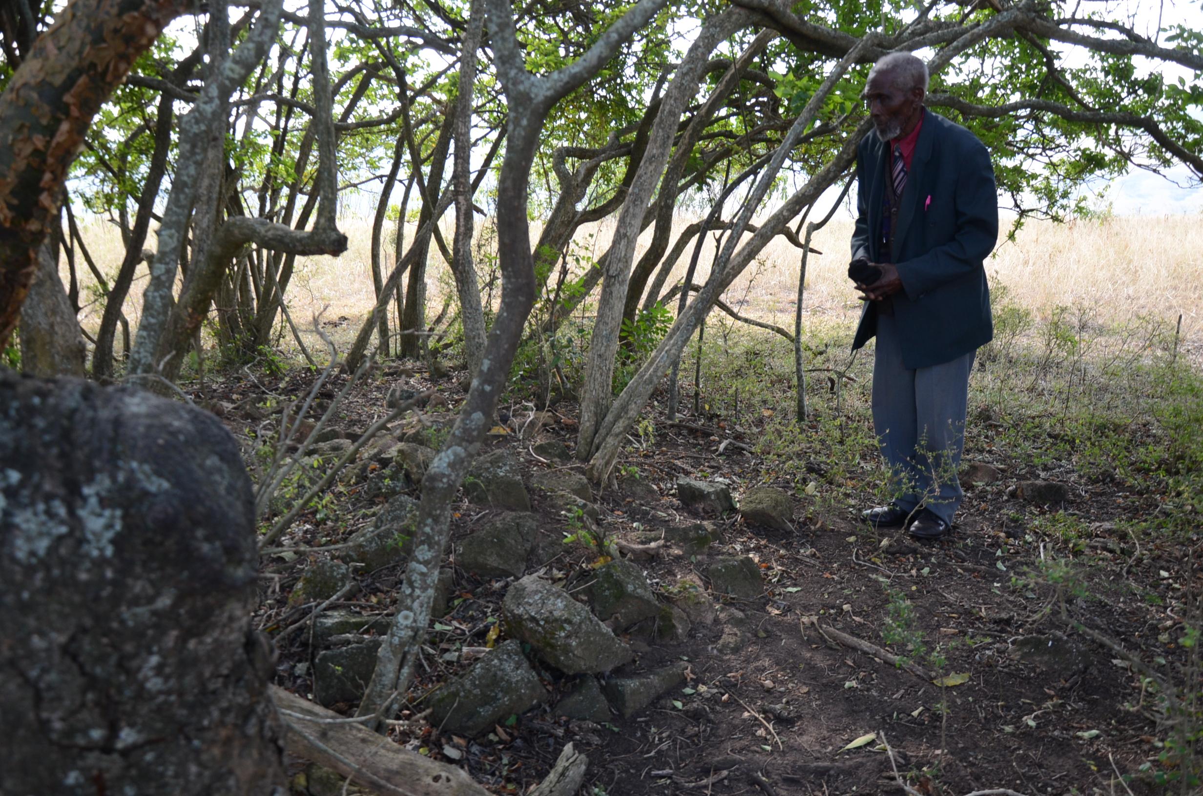Zwischen den Bäumern ein paar verstreute Felsbrocken von den Gräbern der Vorfahren.