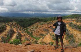 In Indonesien müssen immer mehr Flächen Palmölplantagen weichen.