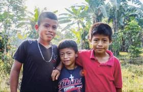 Die drei Söhne von Carolina Oelpalm Plantagen Palmöl