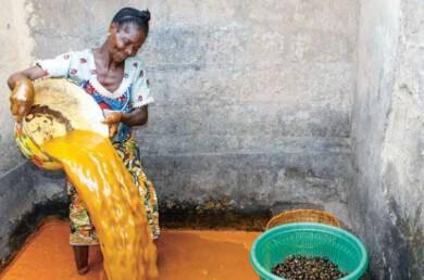 Eine Kleinbäuerin in Benin bei der traditionellen Palmölverarbeitung. Für viele ist der Verkauf des Palmöls eine wichtige Einkommensquelle.