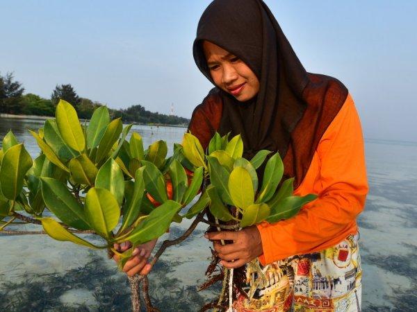 Weboptimiert_Frau aus Indonesien