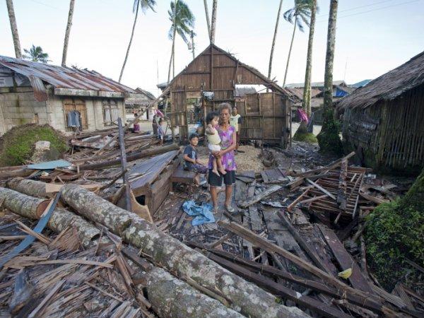 Rene Calmarez, Kokosnussbaum zerstoert Haus